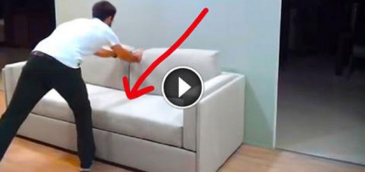 what this couch can