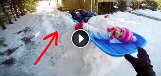 Guy Built a Luge Track in Backyard