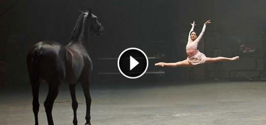 ballerina performs horse responds