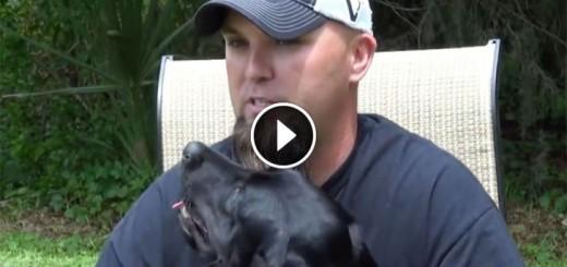 service dog veteran panic attack