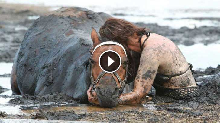 She Spends 3 Hours Clinging To Her Horse As It Sinks In The Mud. What Happens Next Is Incredible!