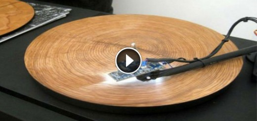tree trunk record player