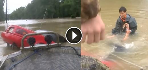 rescue woman dog sinking car