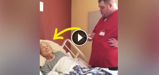 hospice-bed